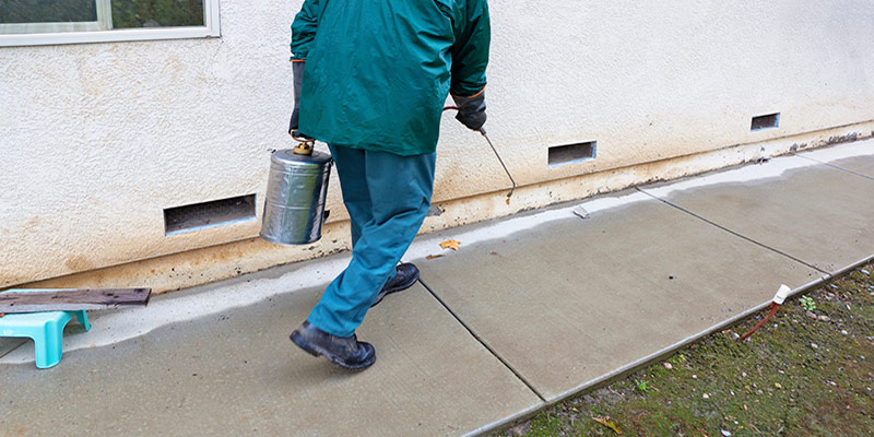 Your Quick Guide to Selecting the Right Pest Control in Melbourne